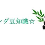 パンダと笹の葉