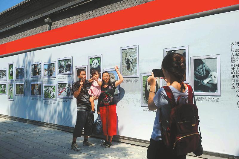 北京胡同の路地裏、パンダの写真作品展示会