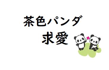 茶色いパンダの求愛