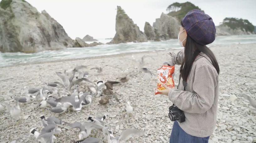 浄土ヶ浜でカモメにかっぱえびせんをあげる