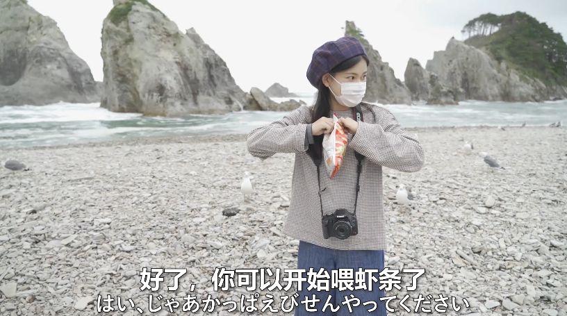 浄土ヶ浜でカモメにかっぱえびせん
